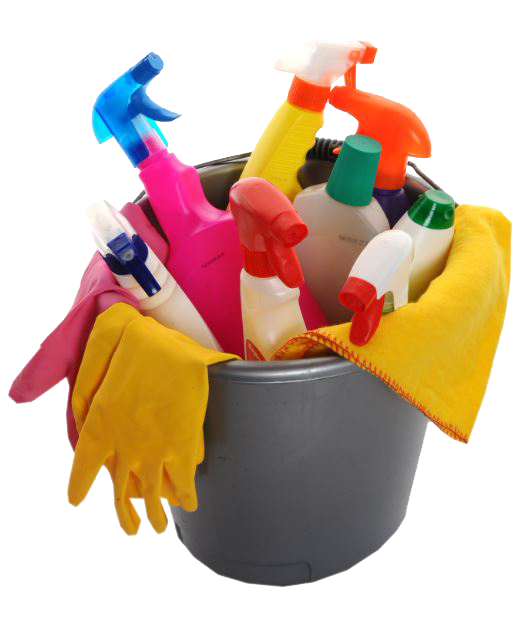 cleaning services from a local agency